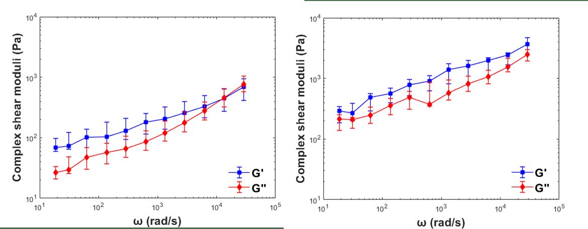 microrheology of polyacrylamide gels