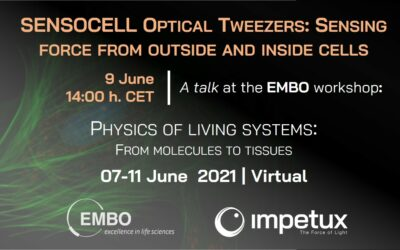 Sensing force from outside and inside cells | EMBO Workshop